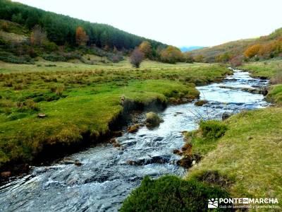 Hayedo Tejera Negra - Fiesta Almudena;botas trekking madrid asociacion senderismo